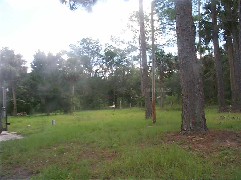 COME TO THE COUNTRY - Come enjoy nature in The Ocala National Forest - 2.5 fenced acres with a 1990 double wide - (3 bedrooms, 2 baths, split plan) with its own pond and private setting and just minutes from The St. Johns River for your fishing and boating pleasure. NO HOA - so bring all your toys (RV, 5th wheel, boat and trailer) and pets too!!  Plat survey and flood elevation certificate available (zone X per public record).  Conveniently located in the quaint community of Astor with lots to do - VFW, Moose, Library, eating establishments (a variety) both on and off the water, local family market, Dollar General, United Southern Bank, tennis courts, ball fields, community center (visit chamber website for calendar of events), public boat ramp and oh so much more!!  Shown by appointment.